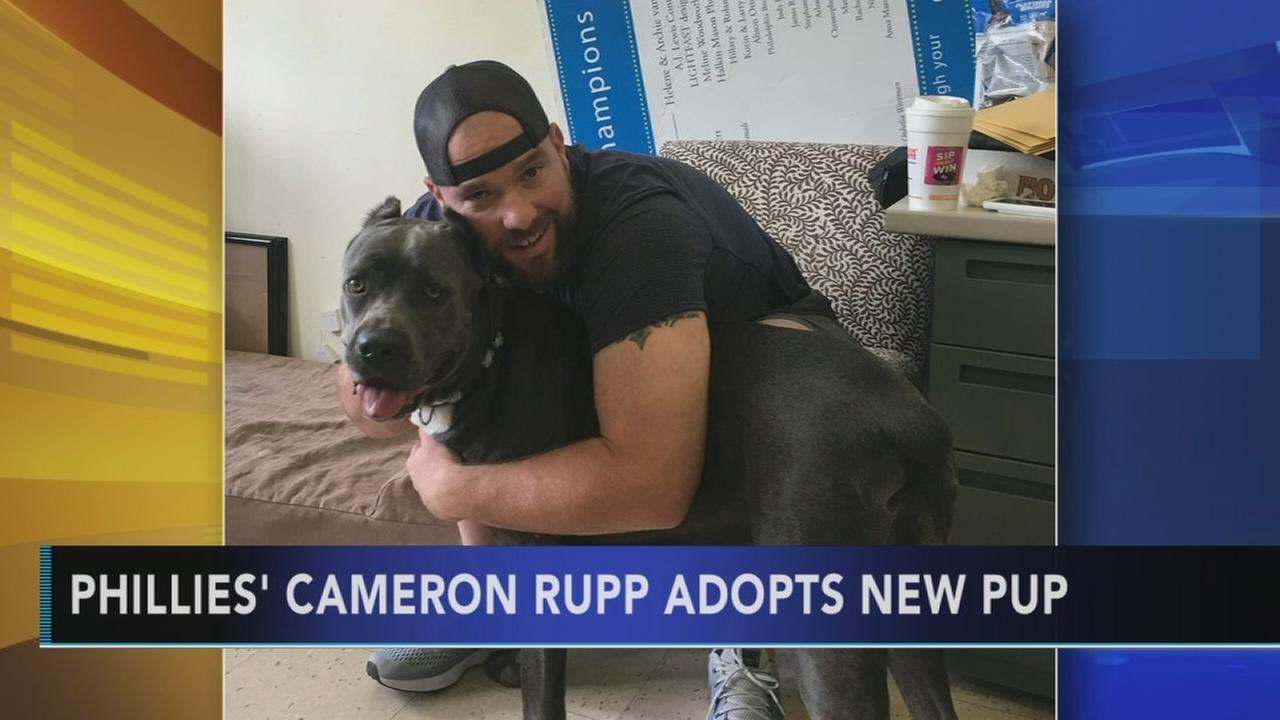 Phillies Cameron Rupp adopts new dog