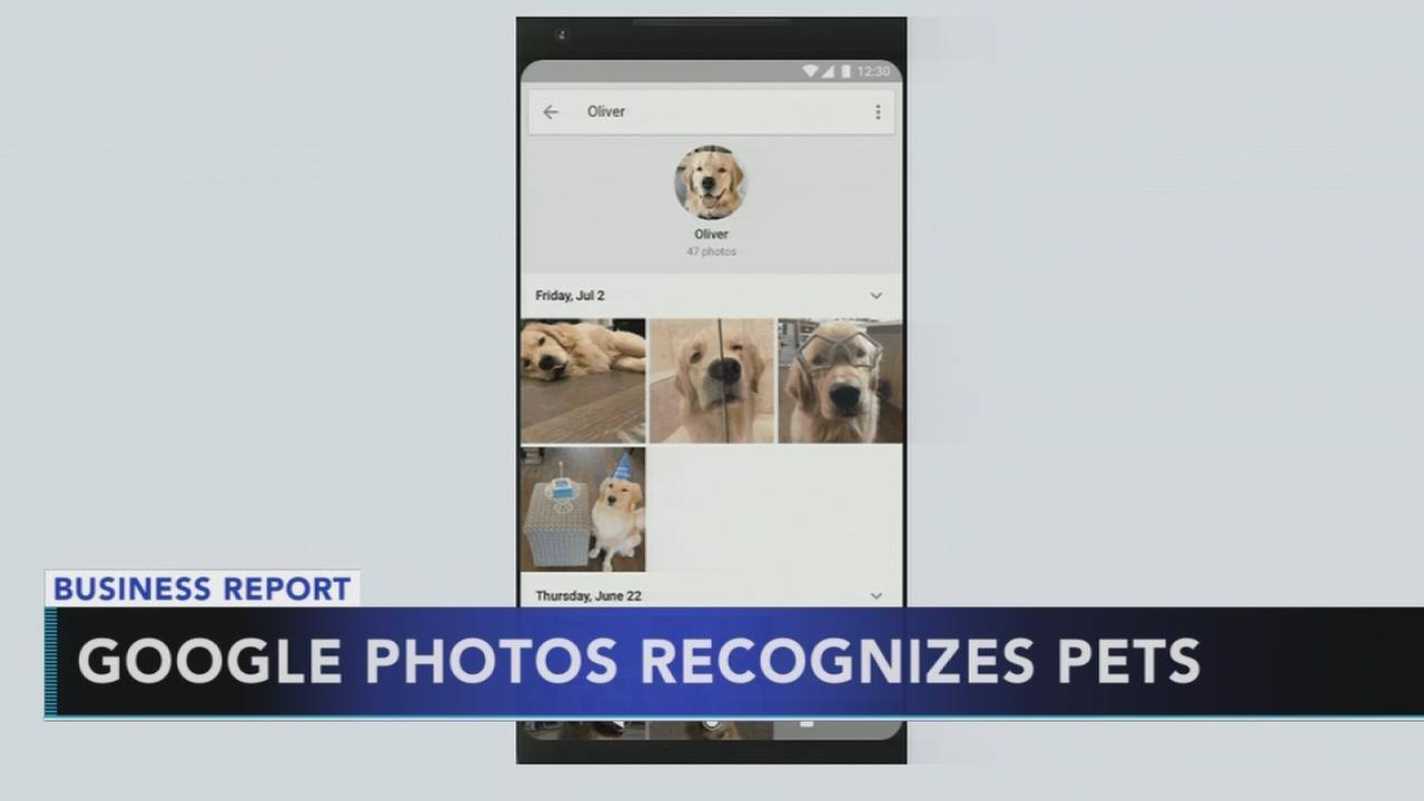 Google photos recognizes pets