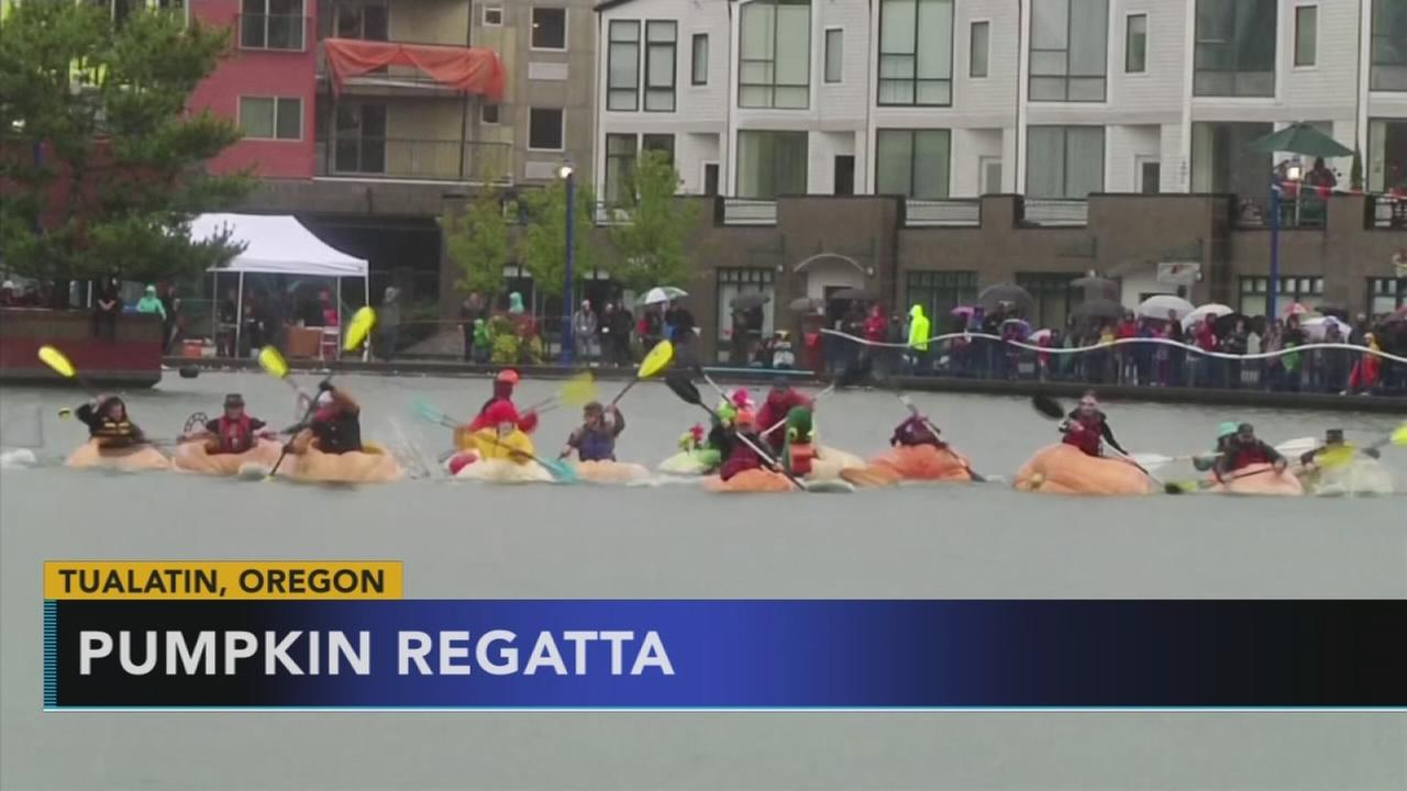 Pumpkin regatta in Oregon