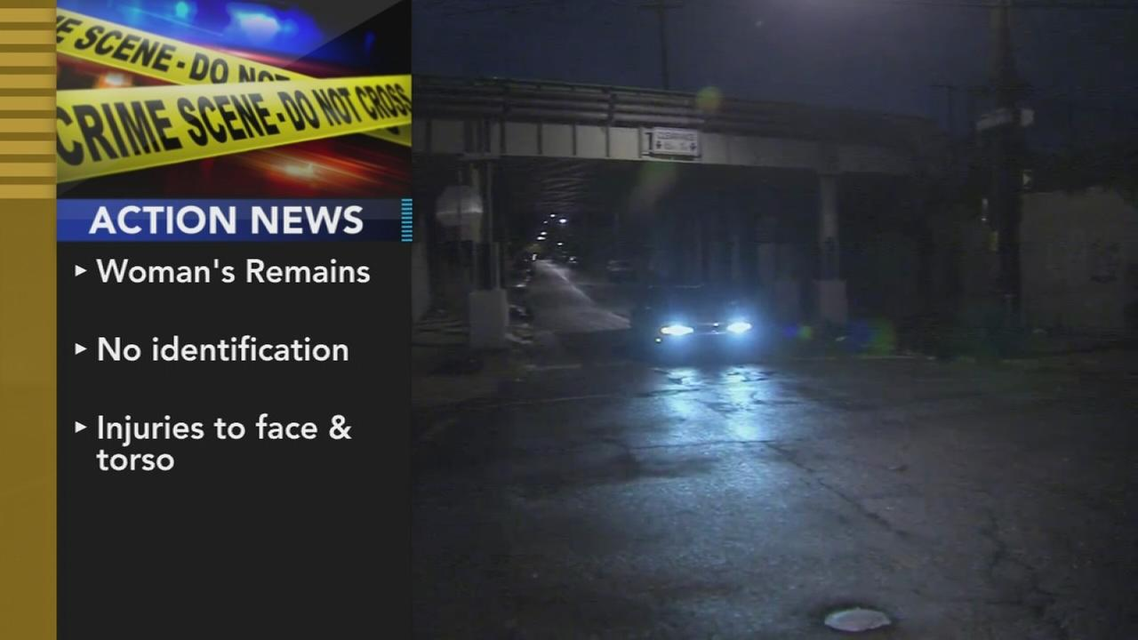 Womans body found in Tioga-Nicetown