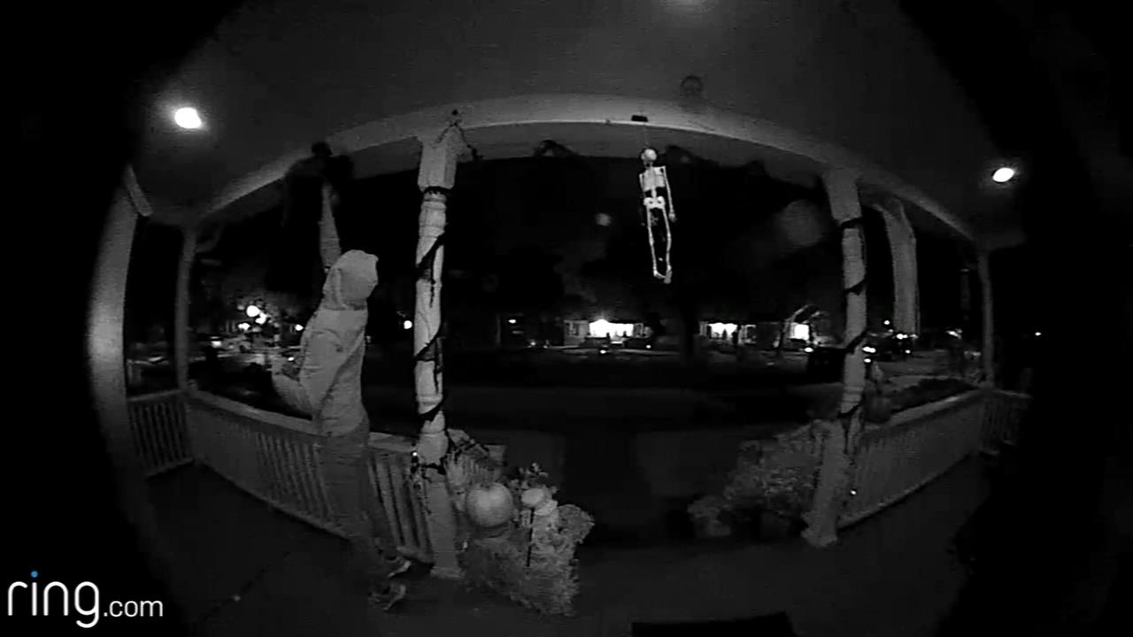 Video shows woman stealing Halloween decorations