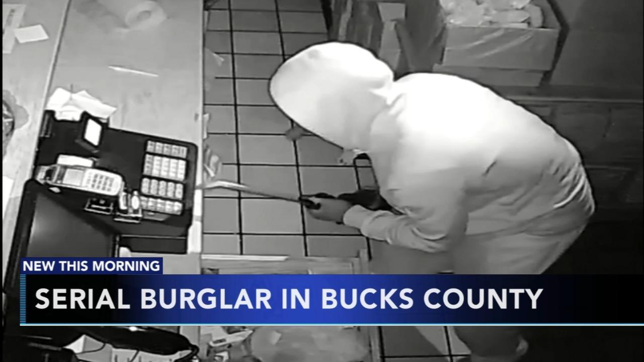 Suspected serial burglar in Bucks County