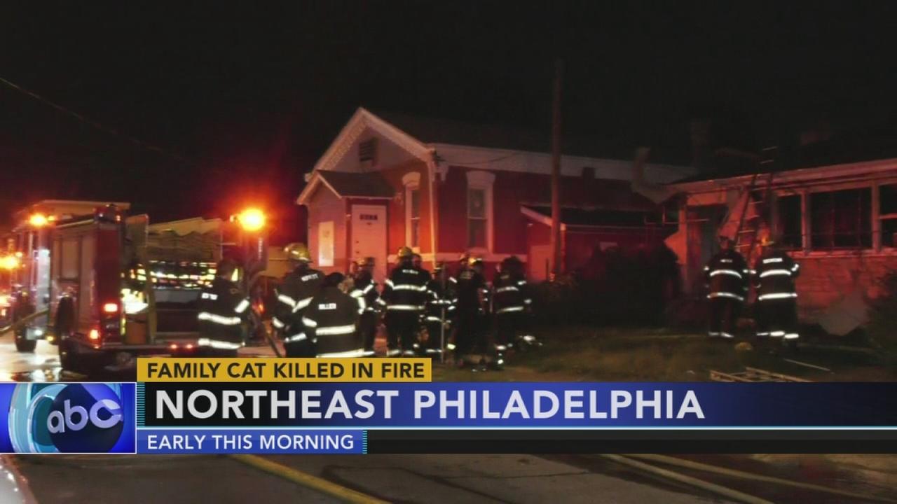 Firefighters battle Northeast Philadelphia house fire