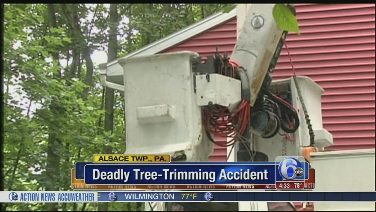 VIDEO: Man killed in tree trimming accident