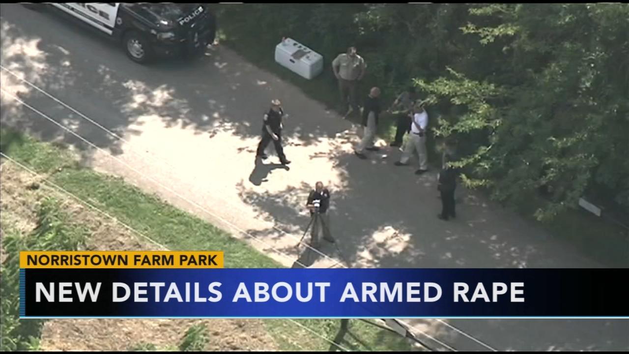 Montco DA releases new details in Norristown Farm Park rape