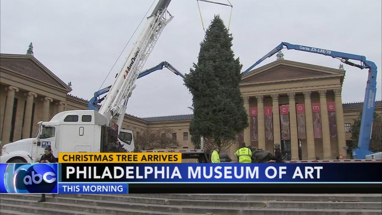 Christmas tree arrives to Philadelphia Museum of Art