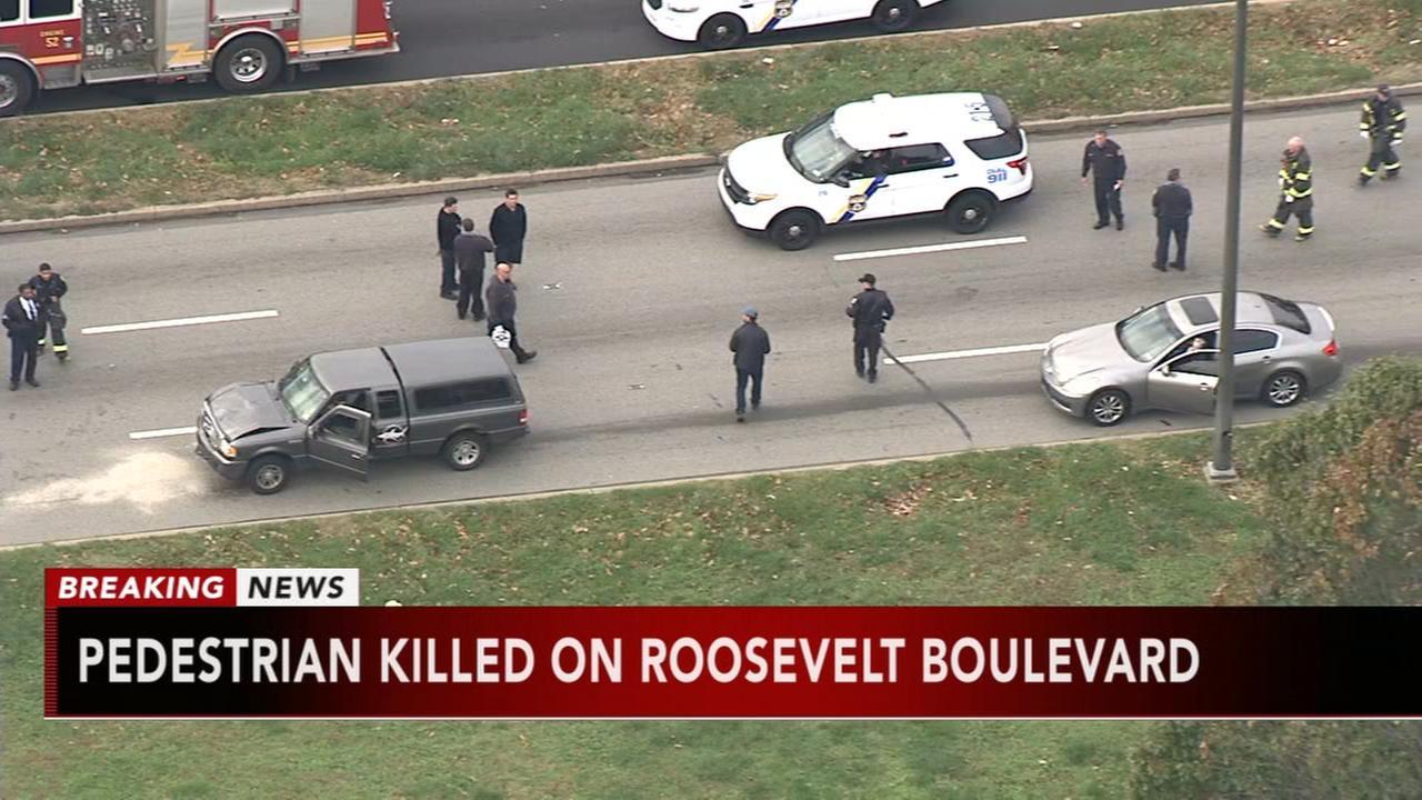 Woman struck, killed on Roosevelt Blvd. in Mayfair