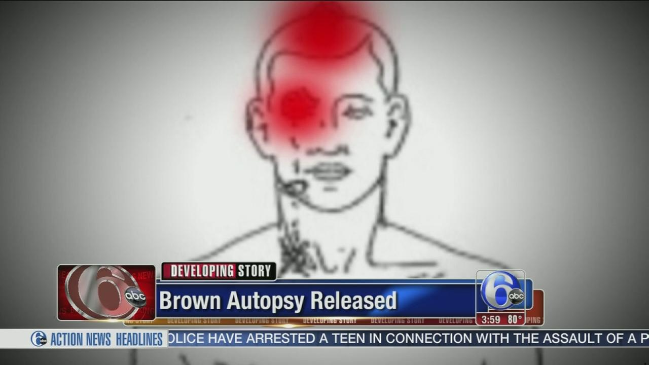 VIDEO: Brown independent autopsy released