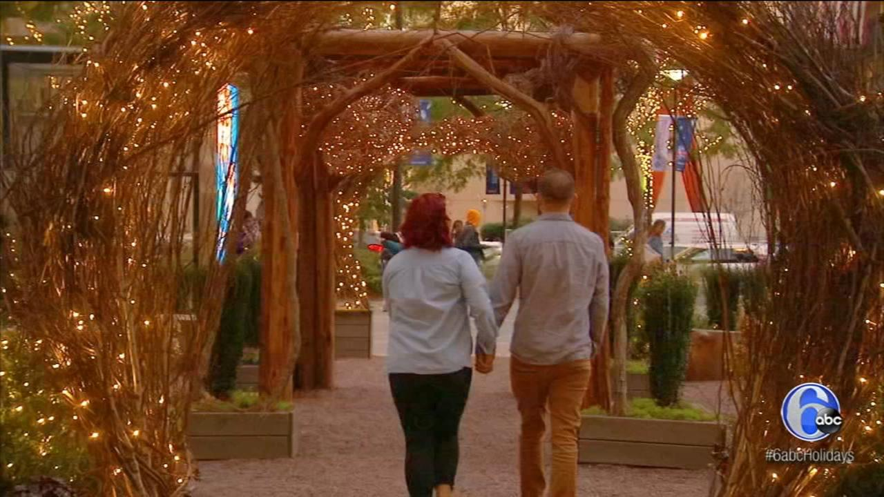 6abc Holiday Special: Garden Capital Maze