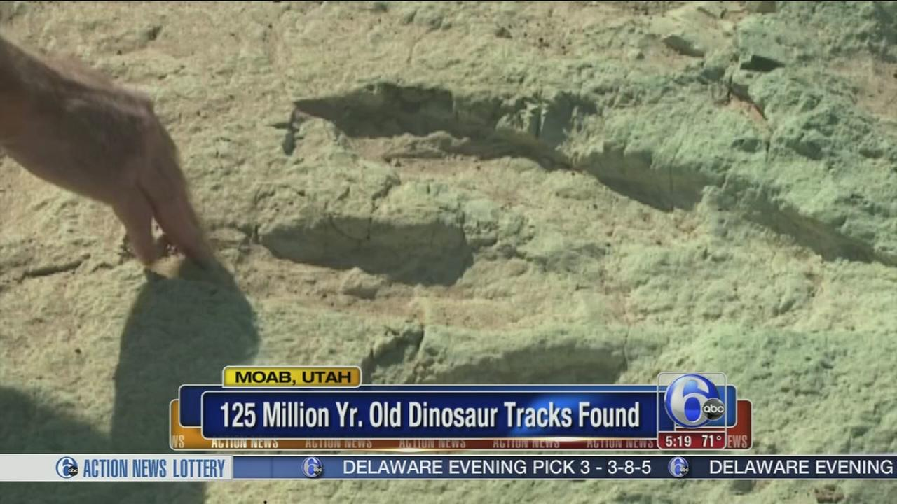 VIDEO: 125M-year-old dinosaur tracks found in Utah