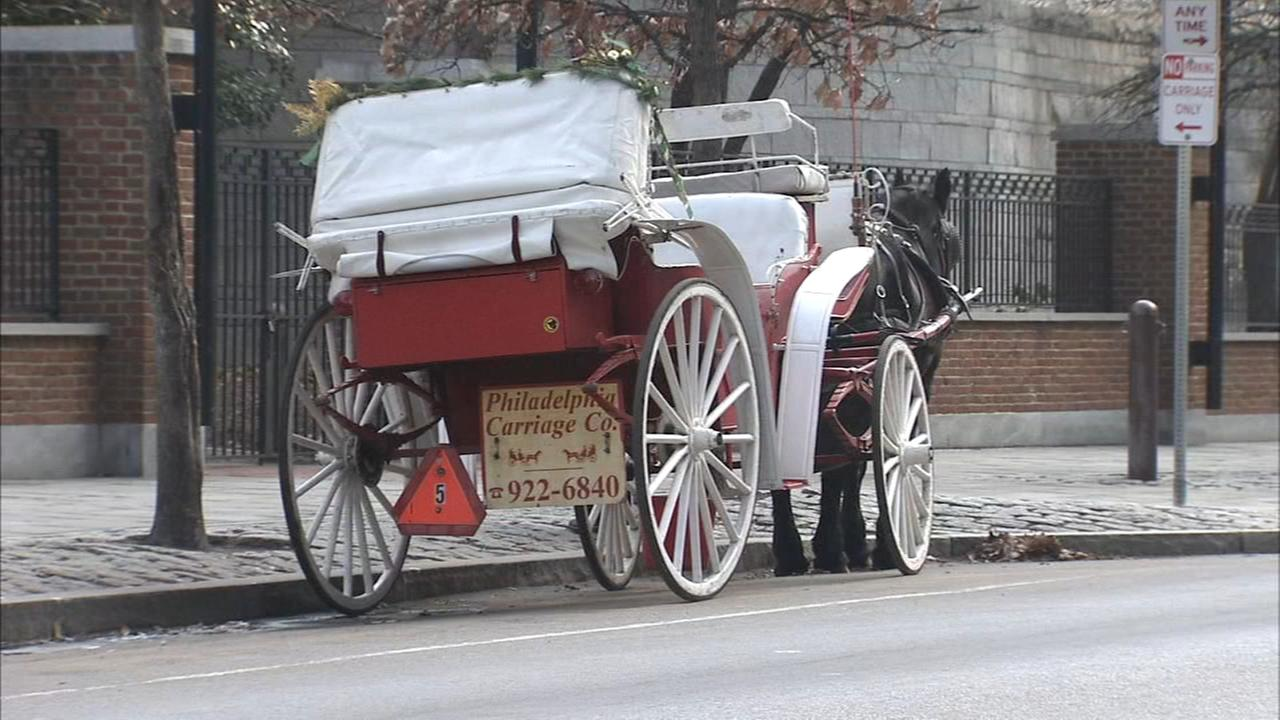 Philly Carriage Co. horses moving to rescue facility