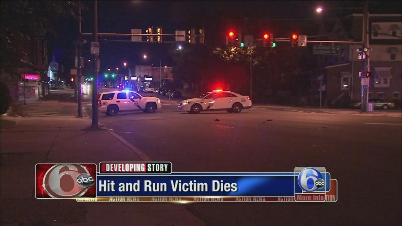 VIDEO: Logan hit-and-run victim dies