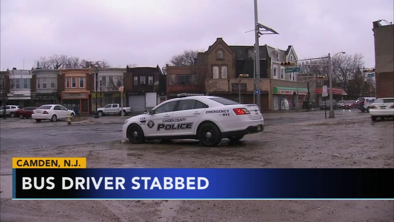 NJ Transit bus driver stabbed after dispute over dog