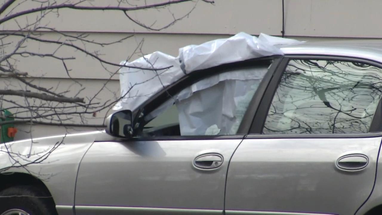 BB gun vandals target vehicle, property