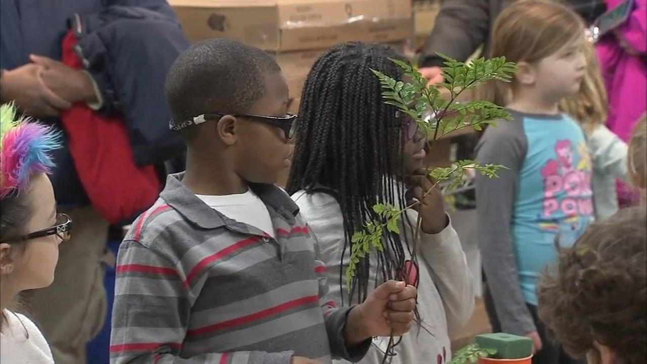 Students at Overlook Elementary get a lesson in flowers