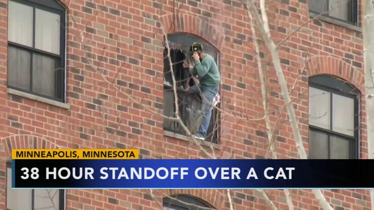 38 hours standoff over a cat