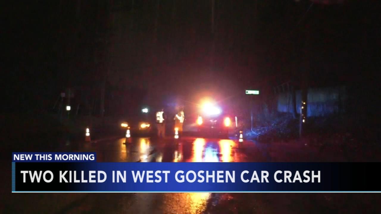 2 killed in West Goshen crash
