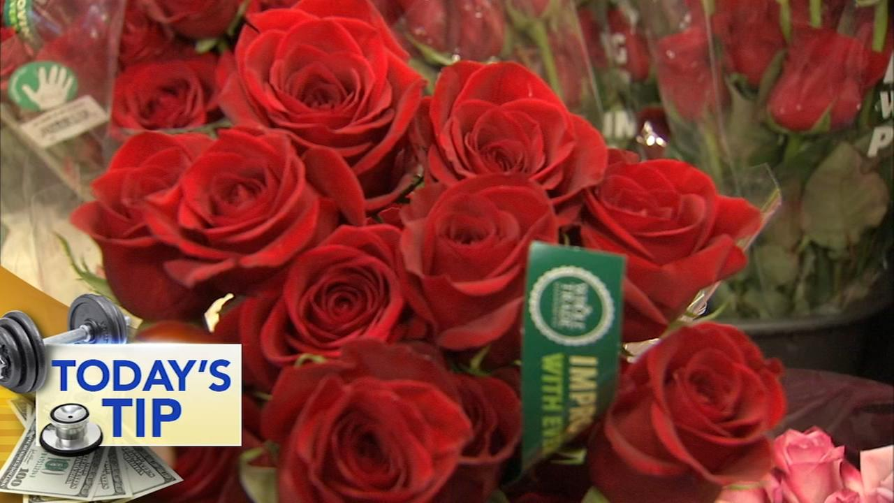 Picking the best roses - Todays Tip