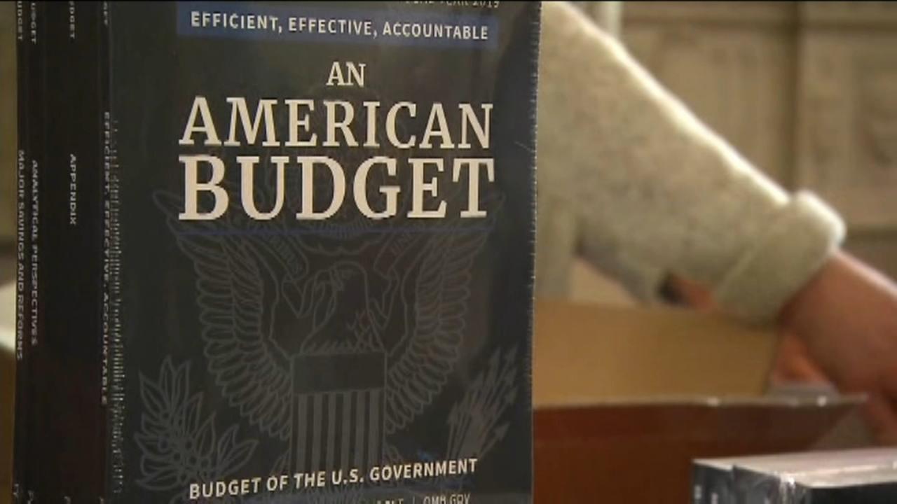 Opioid Budget