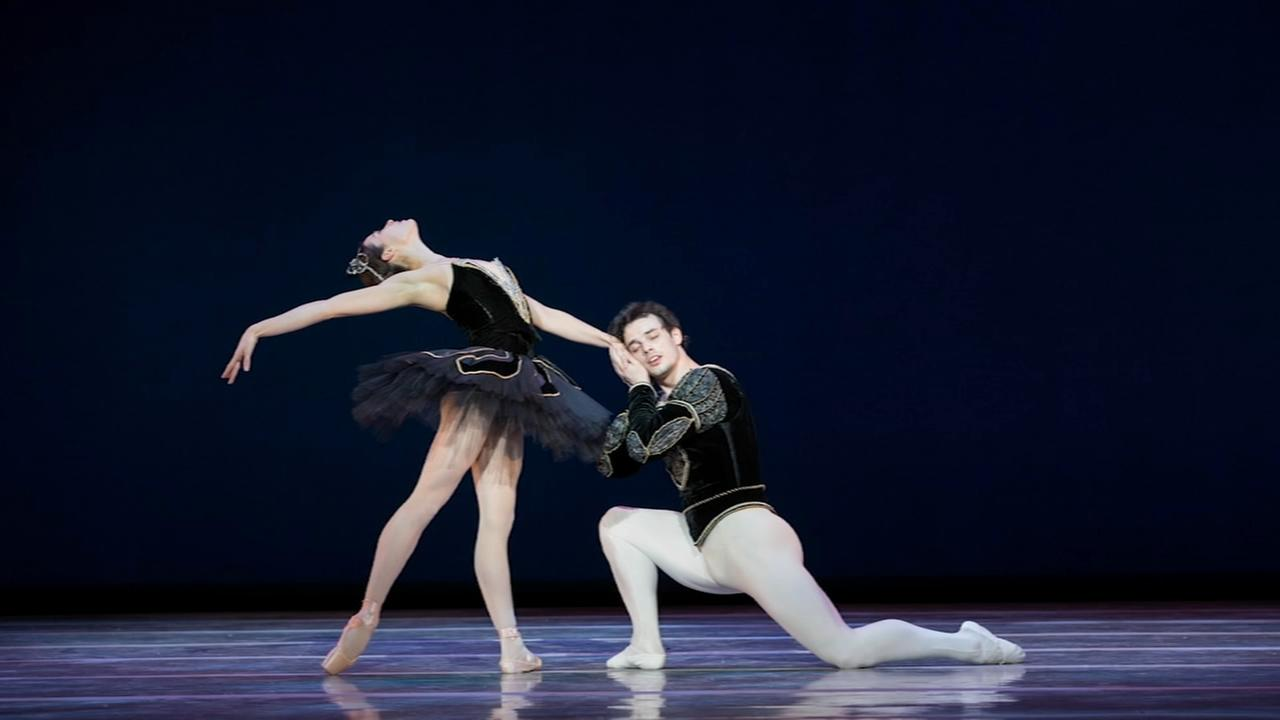 6abc Loves the Arts: Swan Lake