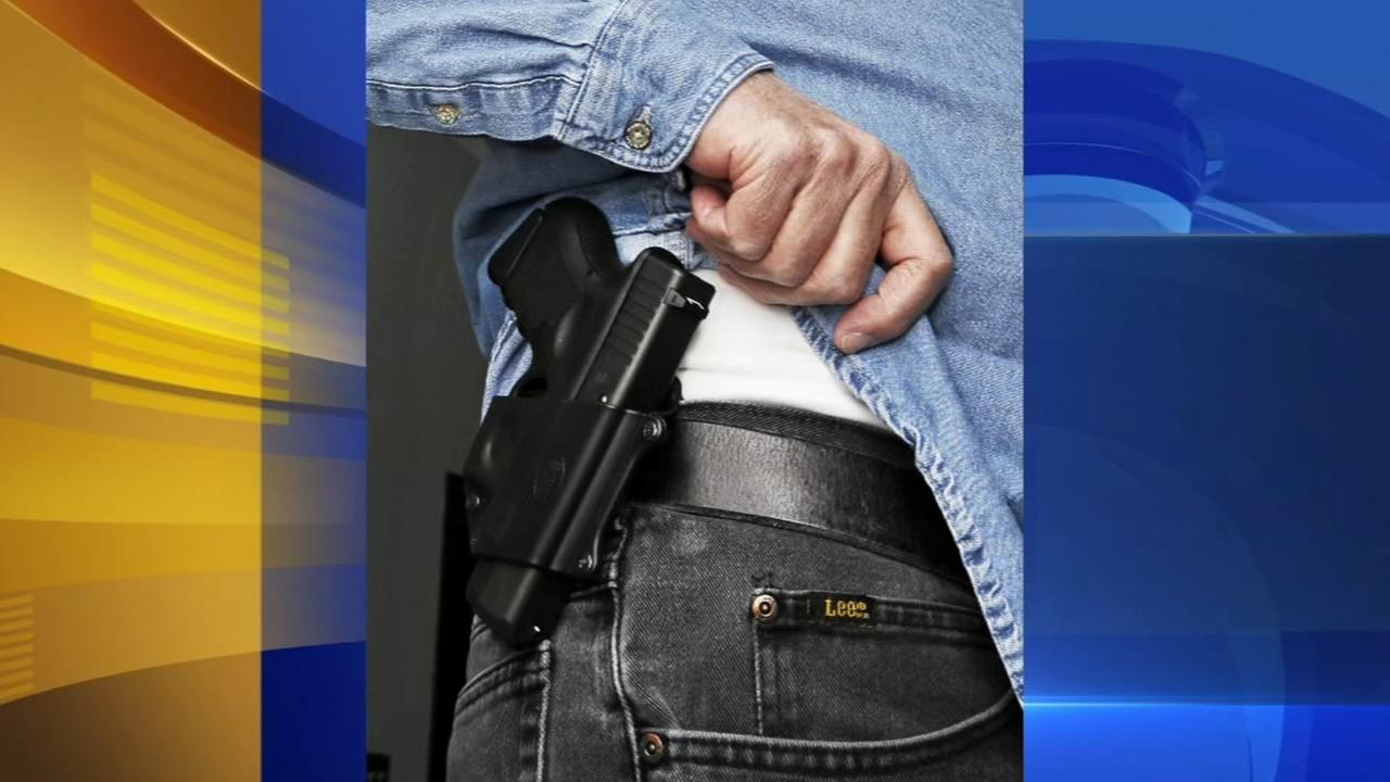 Chitwood proposes concealed carry in schools