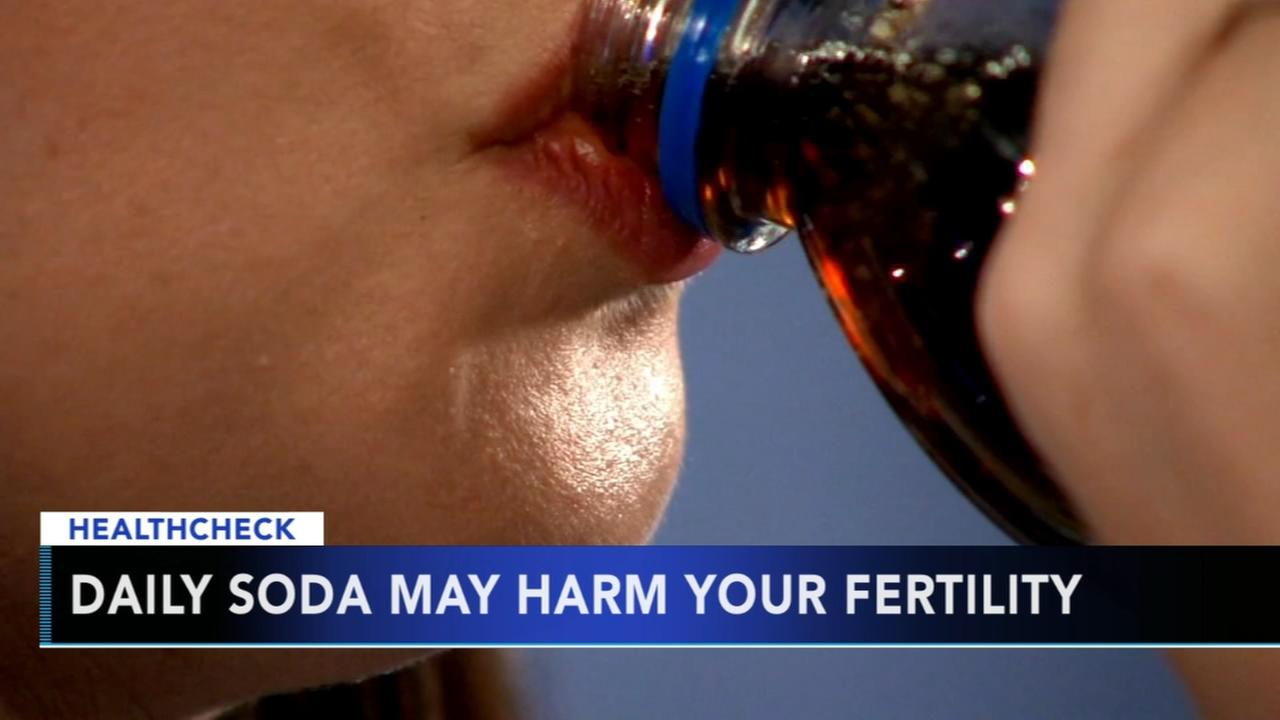 Daily soda may harm your fertility
