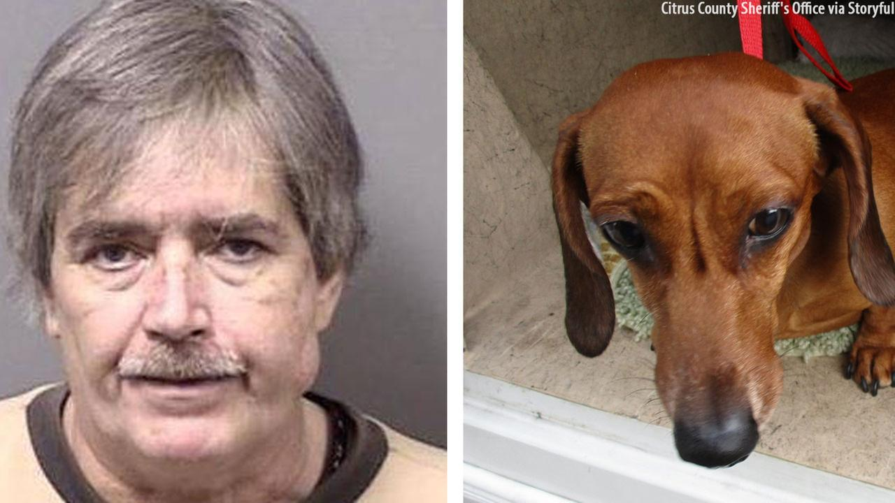 PICTURED: 58-year-old Anthony Avella and his dachshund.