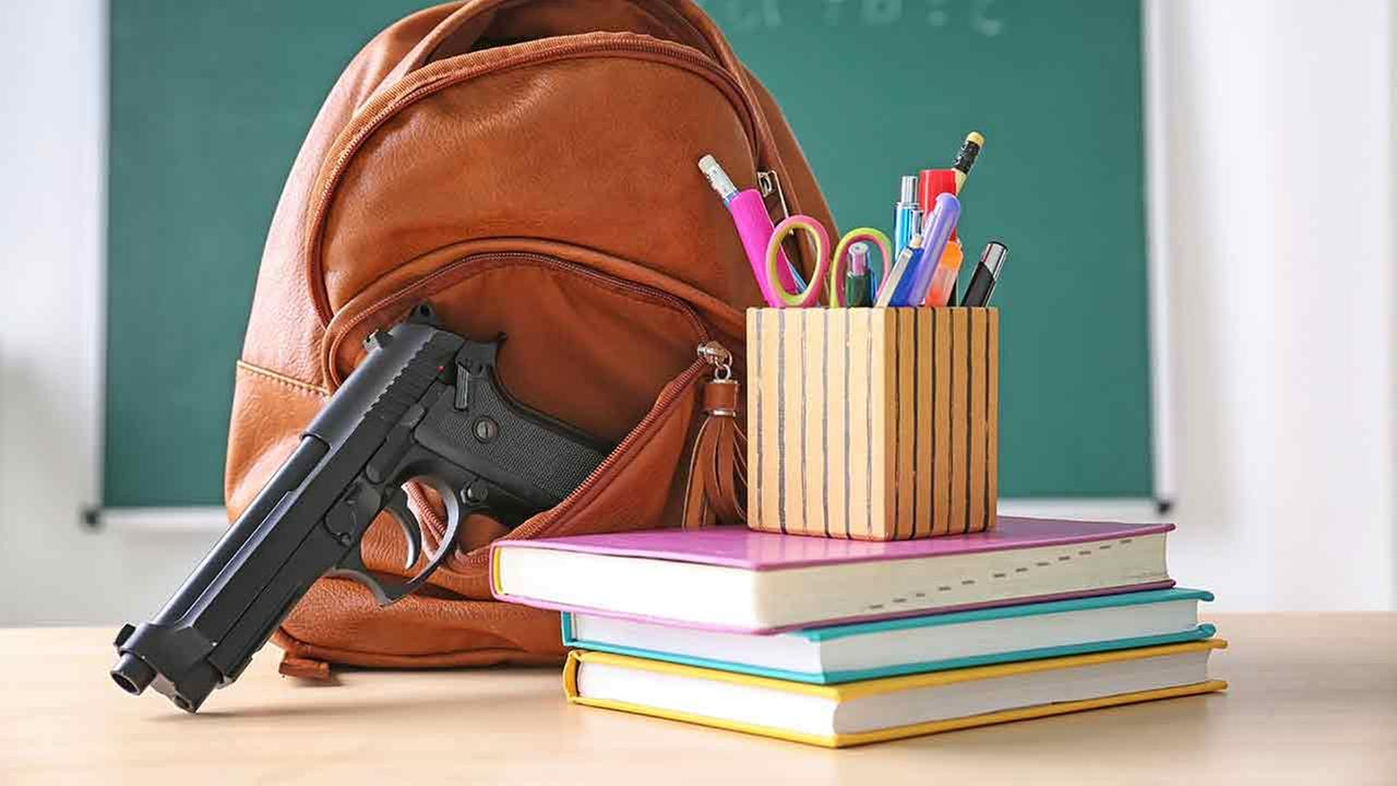 guns in school