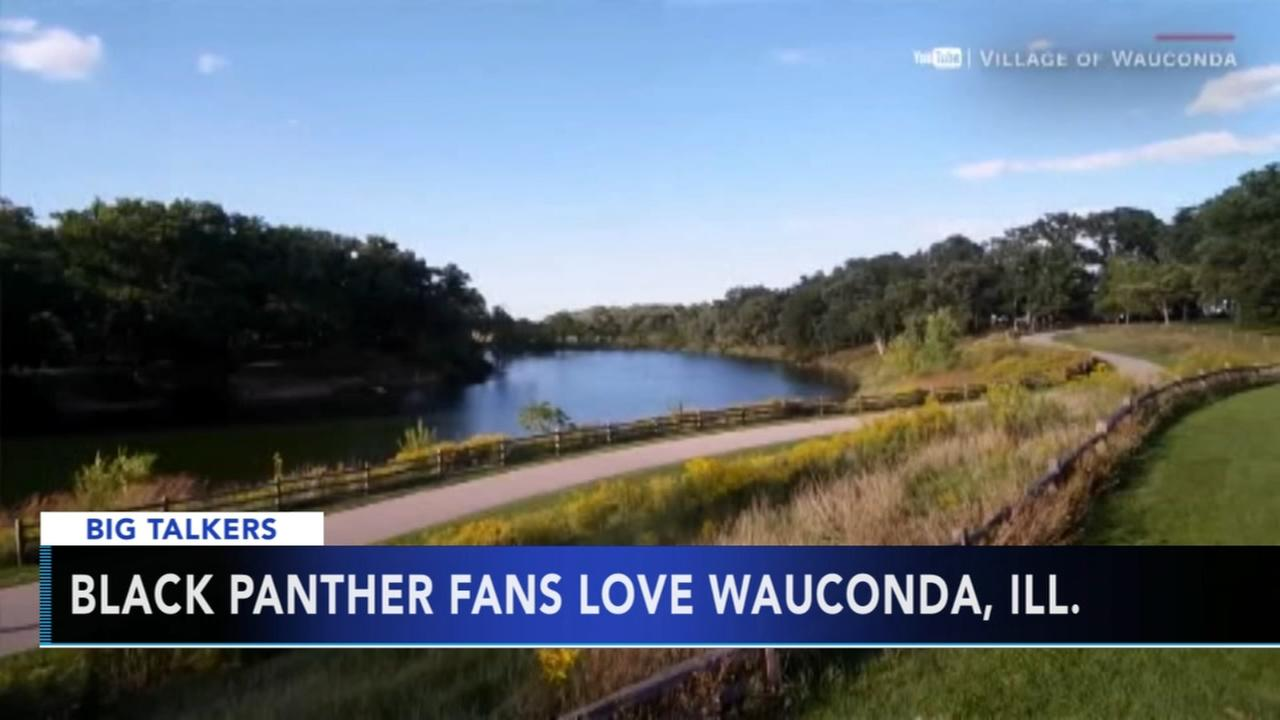 Black Panther fans love Wauconda, Illinois