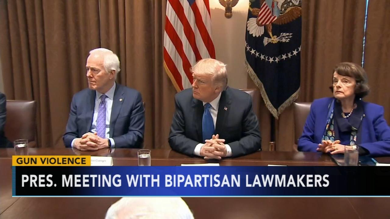 Trump meets with bipartisan lawmakers on gun control