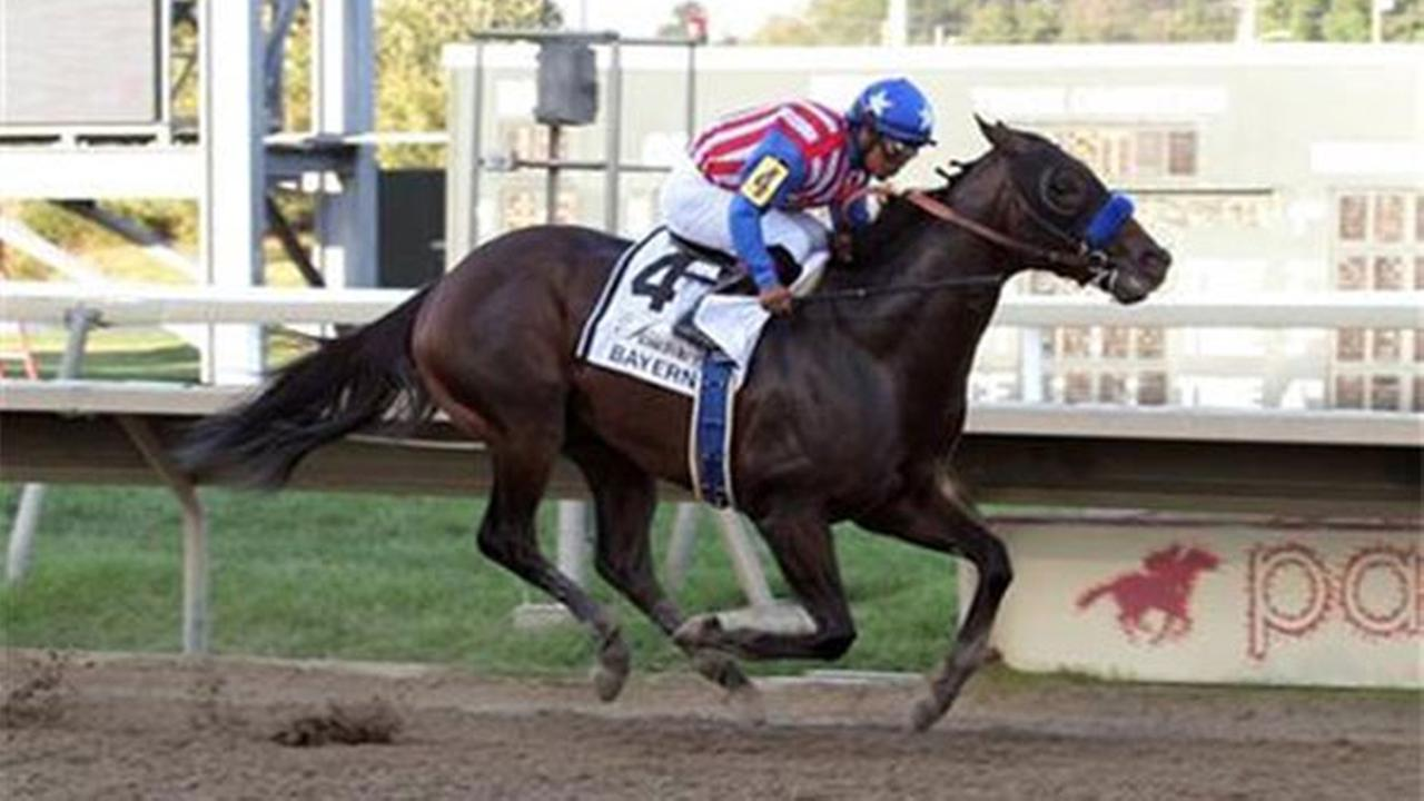 Bayern, with Martin Garcia aboard, runs on its way to winning the Pennsylvania Derby horse race at Parx Racing in Bensalem, Pa., Saturday, Sept. 20, 2014.