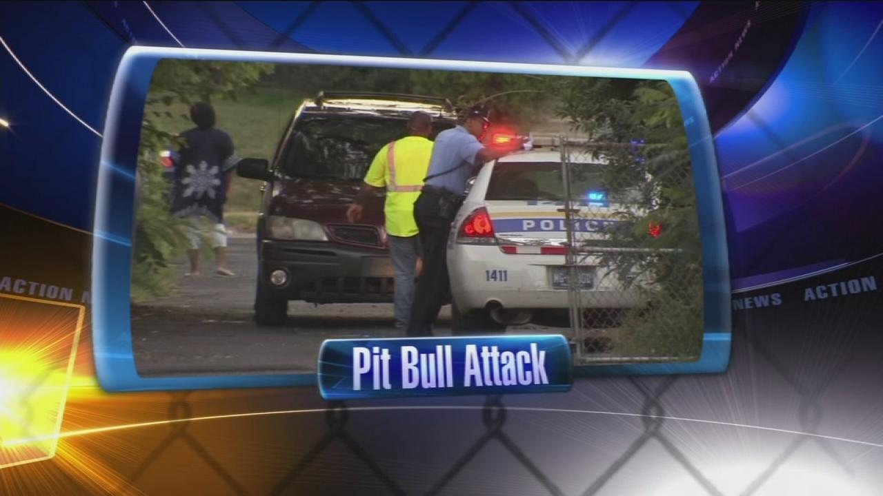 VIDEO: Man, 2 kids attacked by pit bull in West Oak Lane