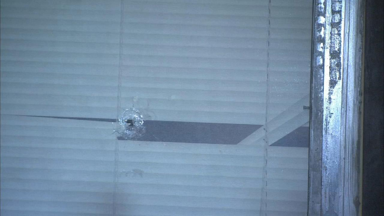 Elderly woman injured when a bullet smashes window