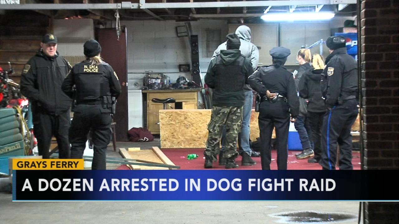 Dog fight raid in Grays Ferry