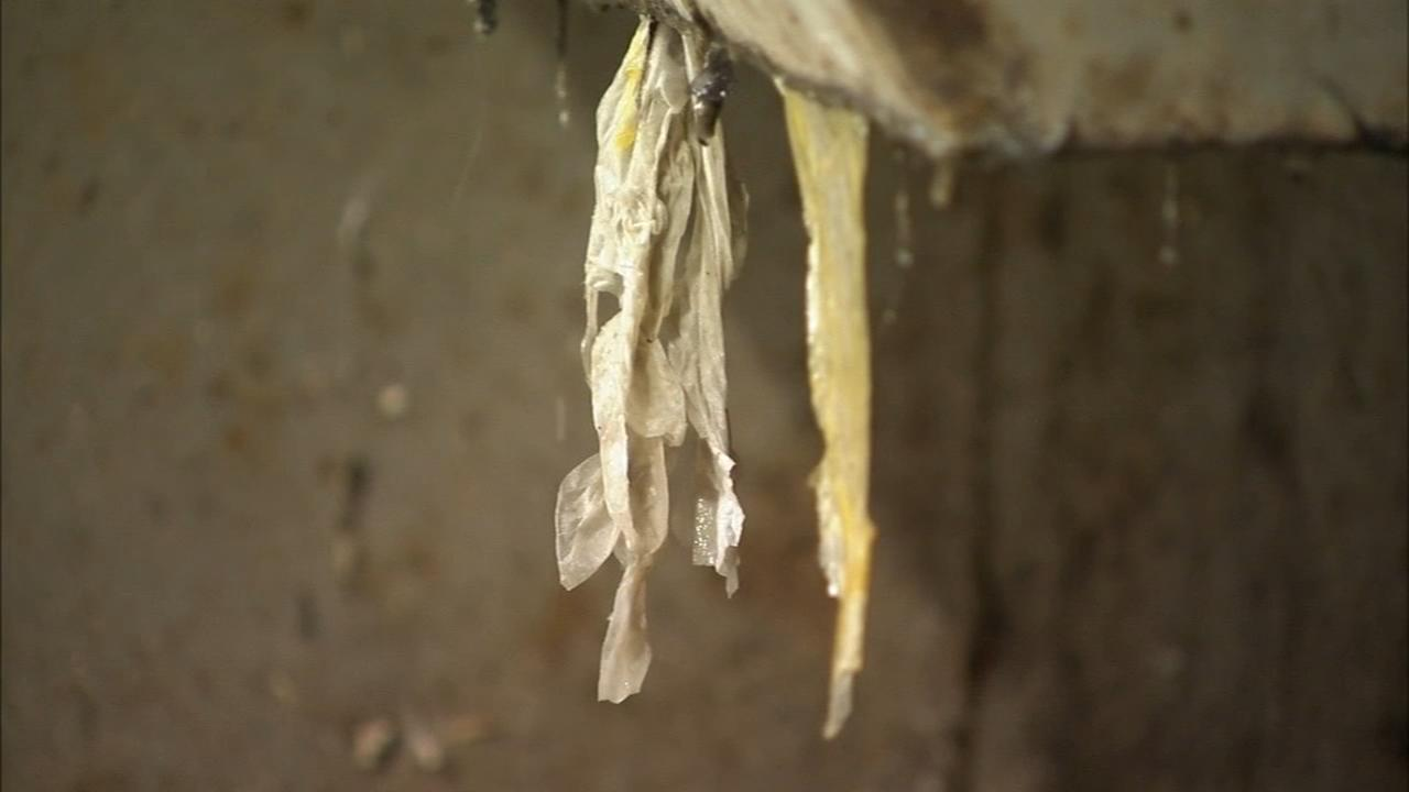 Flushable Wipes Creating Expensive Problem at Local Sewage Plant