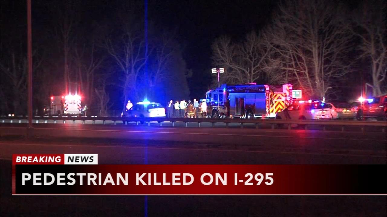 Pedestrian killed on i-295
