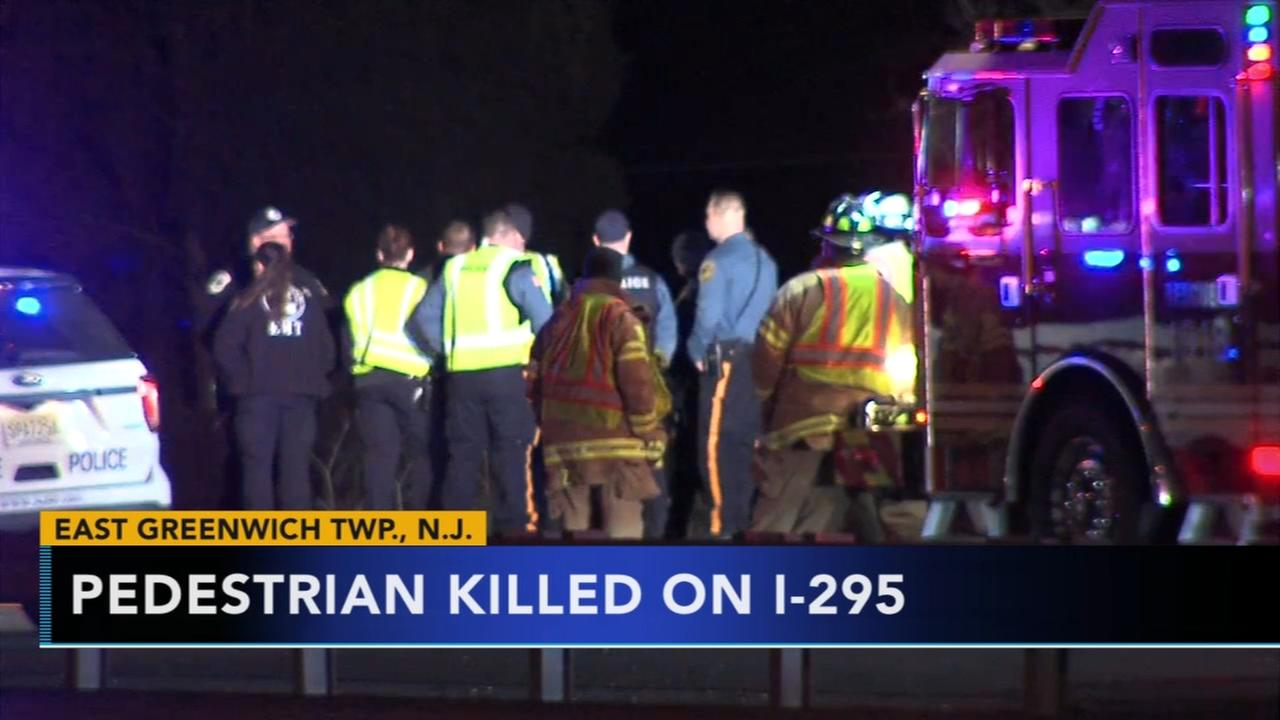 Pedestrian struck and killed on I-295