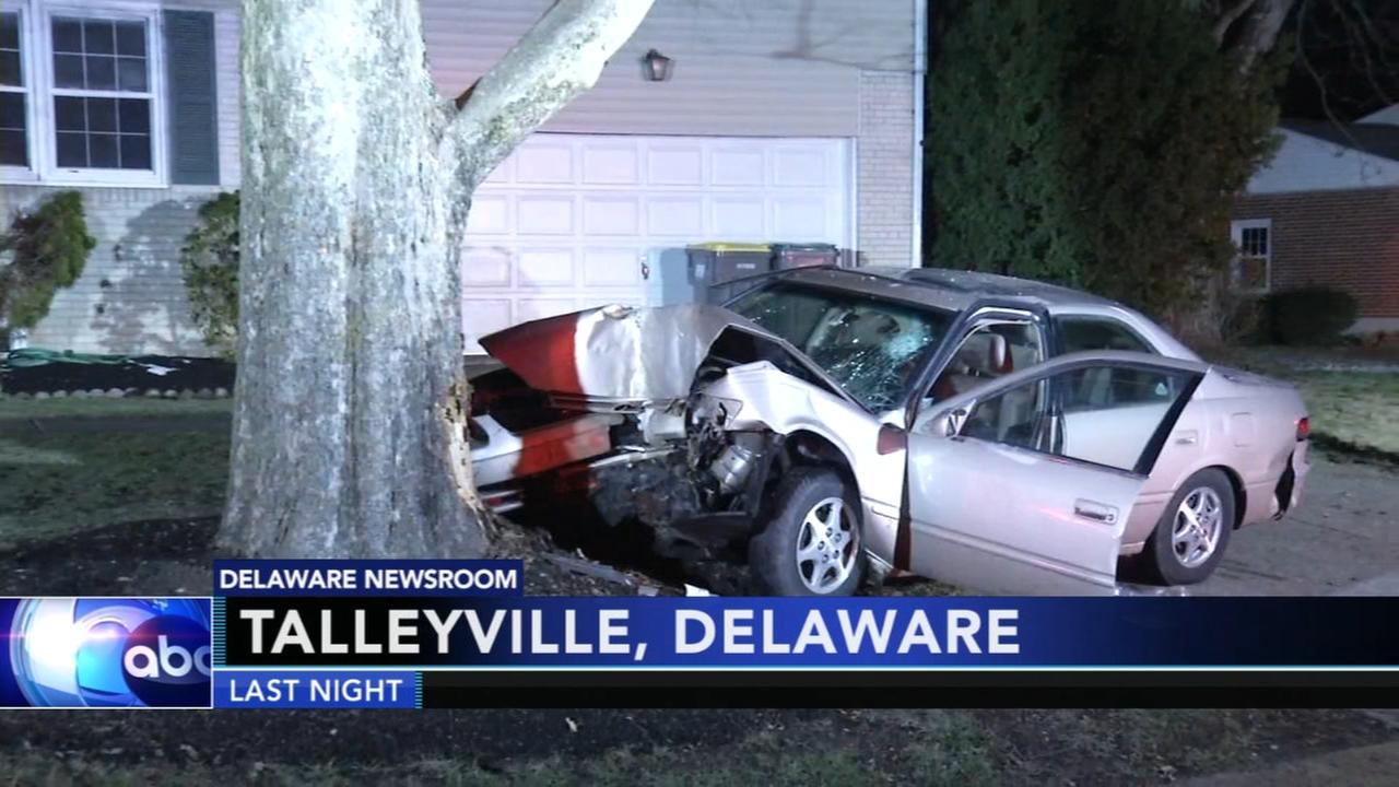 Driver seriously injured after striking tree in Talleyville