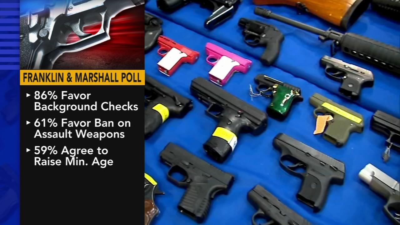 Poll: Most Pa. voters favor background checks