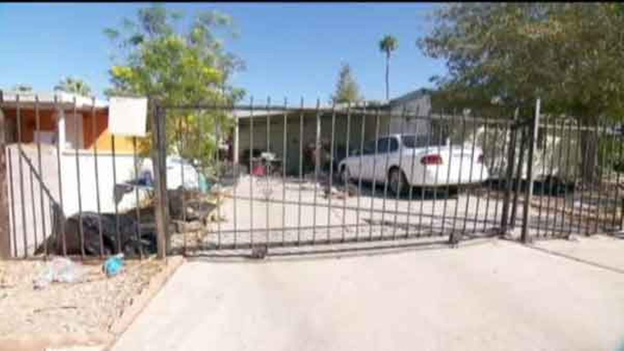 Two tenants who authorities said had 93 small dogs in a home they rented from a North Las Vegas city councilman could face animal-cruelty charges after a weekend fire.