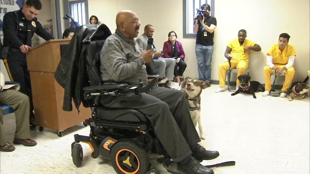 Veterans receive service pets in South Jersey