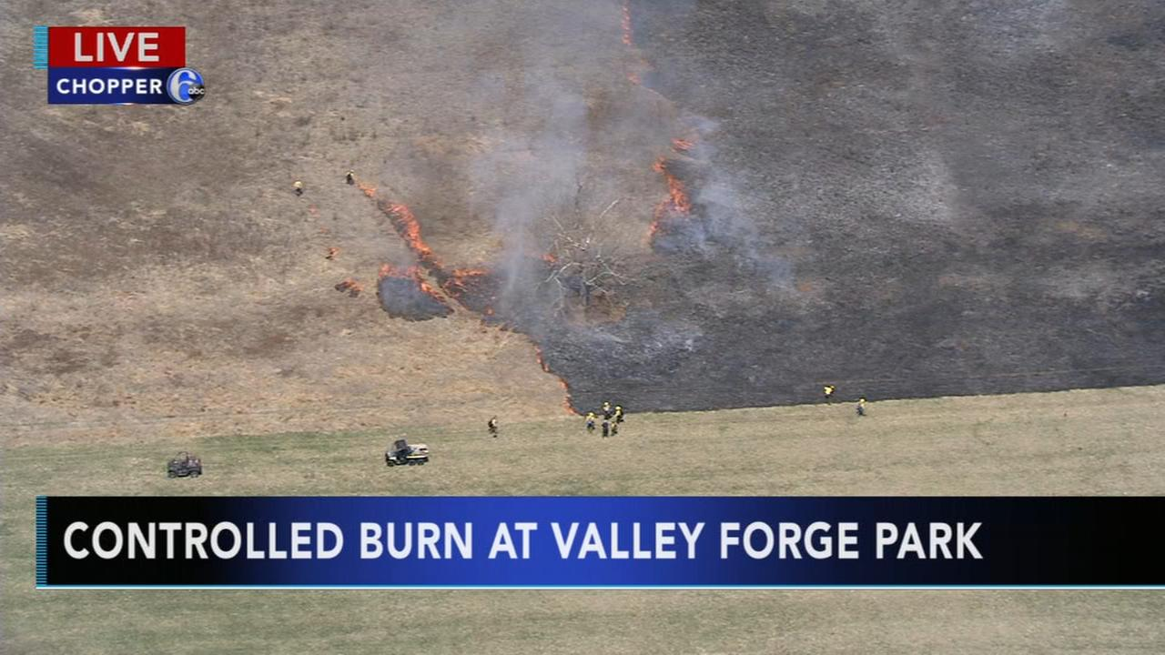 Controlled burn at Valley Forge