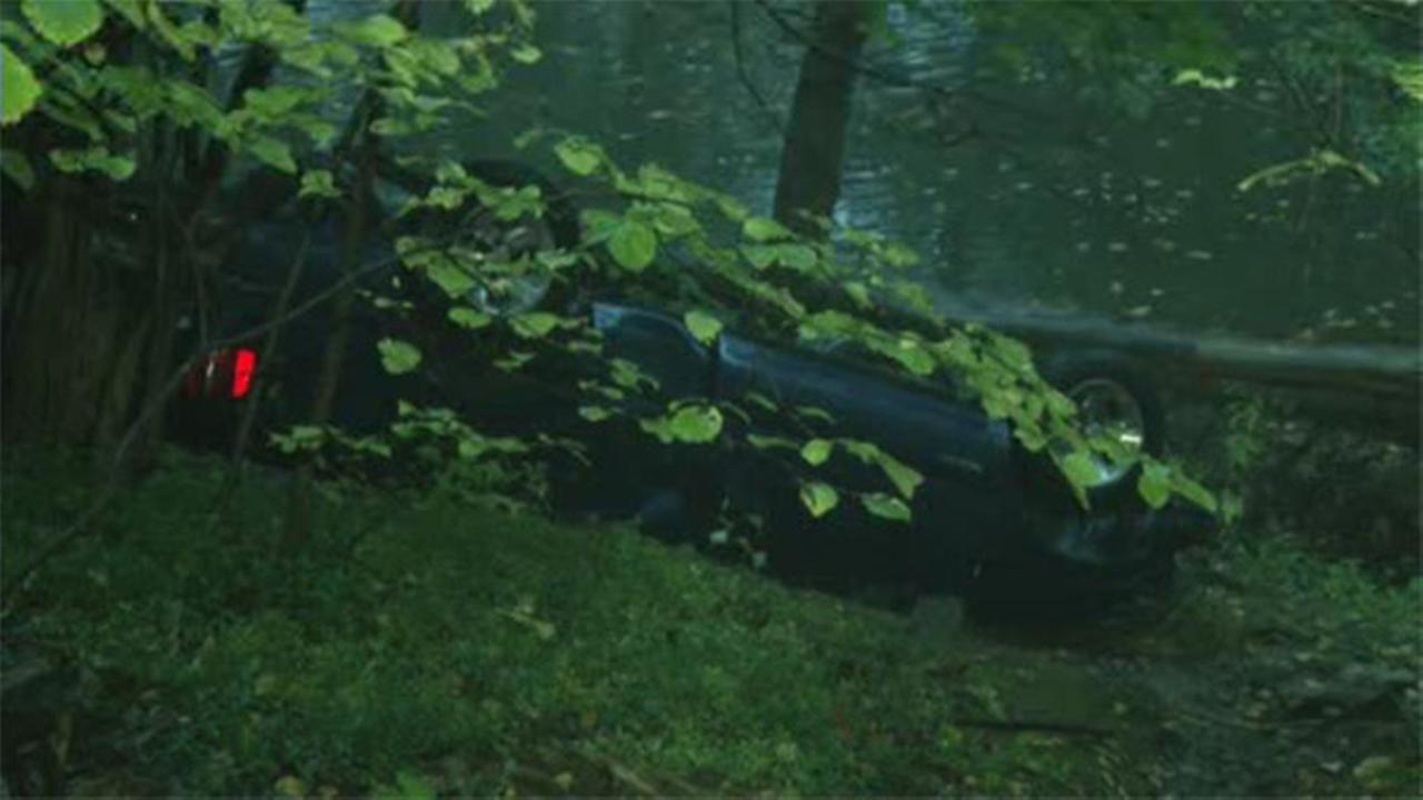 Driver rolls down embankment in Fairmount Park