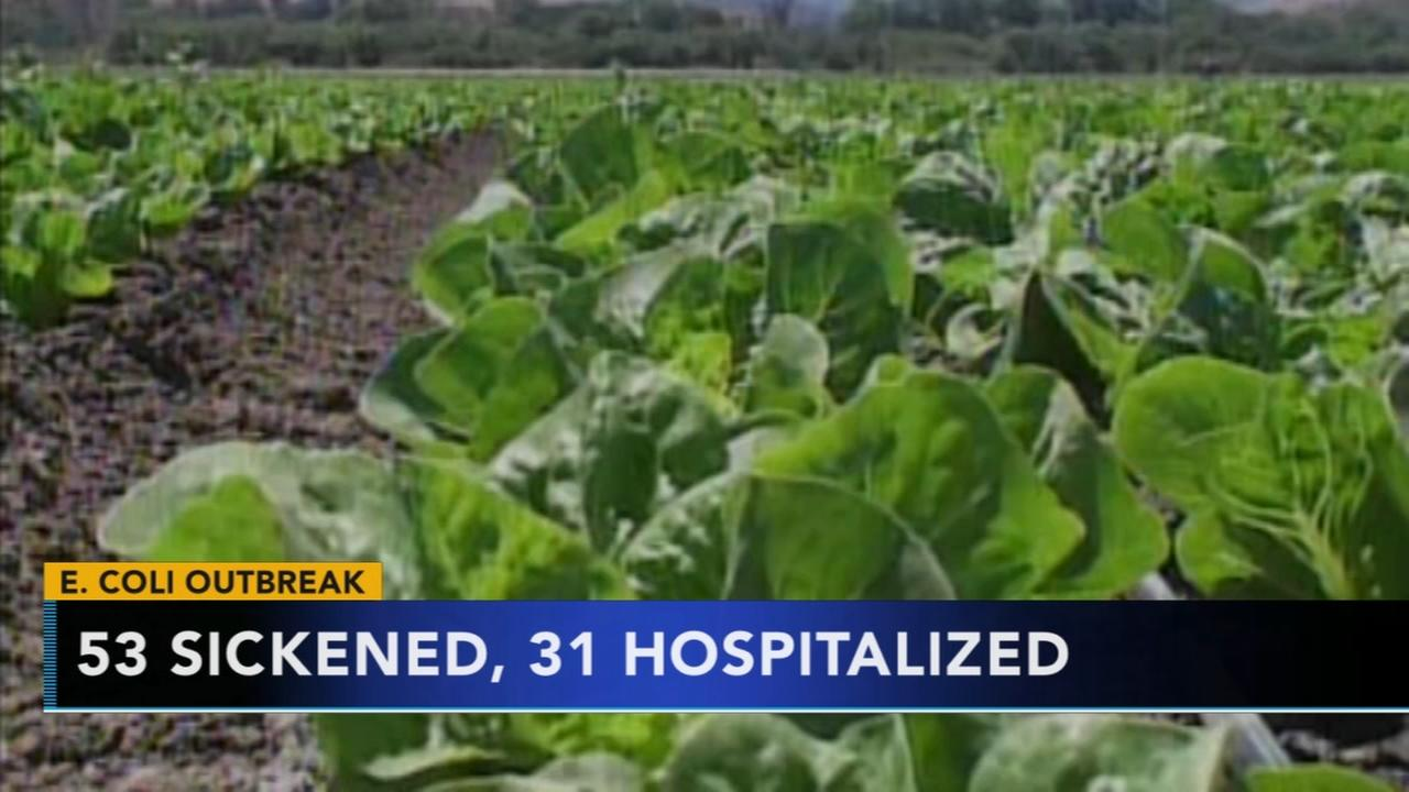 Dozens sickened, and hospitalized after E.coli outbreak