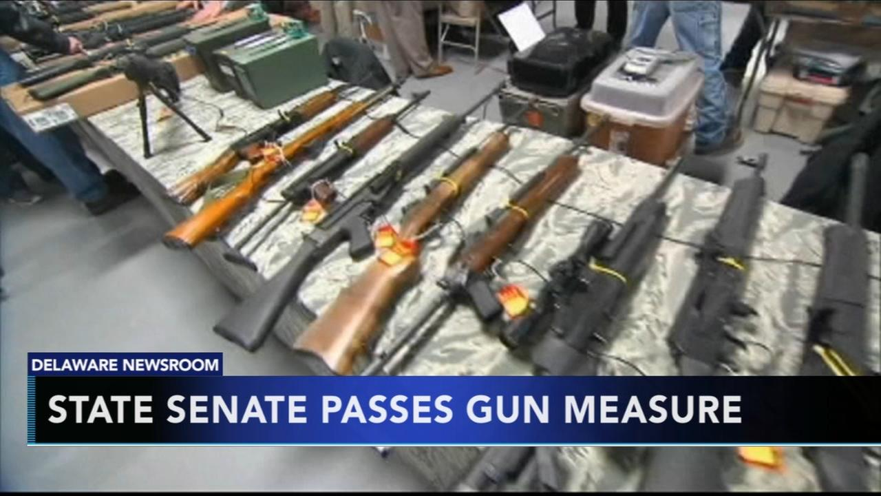 Mental health gun law clears state Senate in Delaware