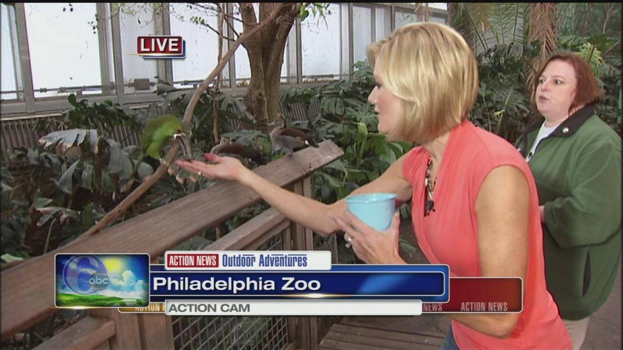 VIDEO: Cecily at the Zoo