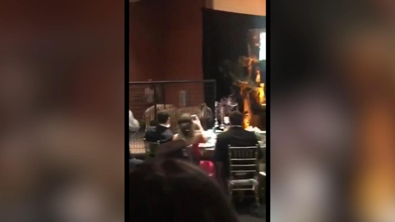 Caged tiger attends high school prom