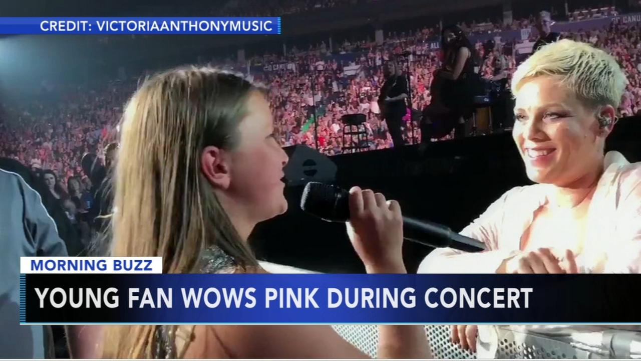 Young fan wows Pink at concert