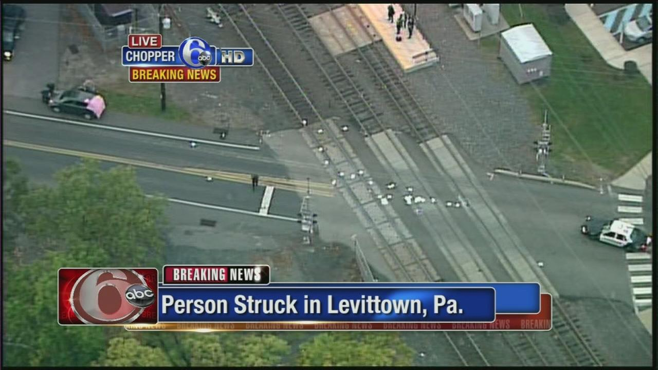 VIDEO: Pedestrian struck in Levittown