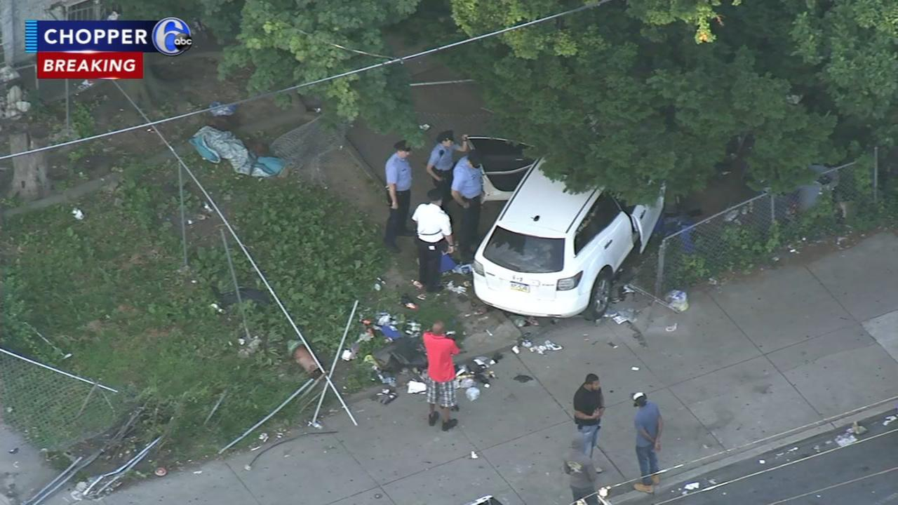 Driver flees after barreling through yards
